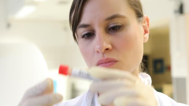 vídeos de stock, filmes e b-roll de feminina cientista lendo o rótulo na garrafa de amostra - etiqueta mensagem