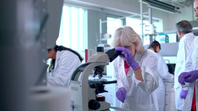 female scientist using microscope in laboratory - magnification stock videos & royalty-free footage