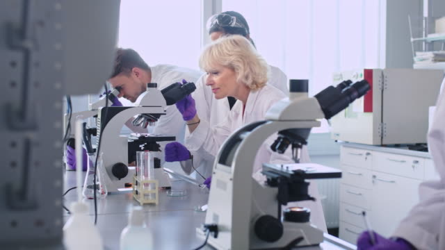 female scientist using microscope in laboratory - accuracy stock videos & royalty-free footage