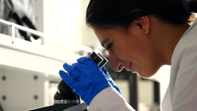 cu female scientist using microscope in laboratory - smart stock videos & royalty-free footage