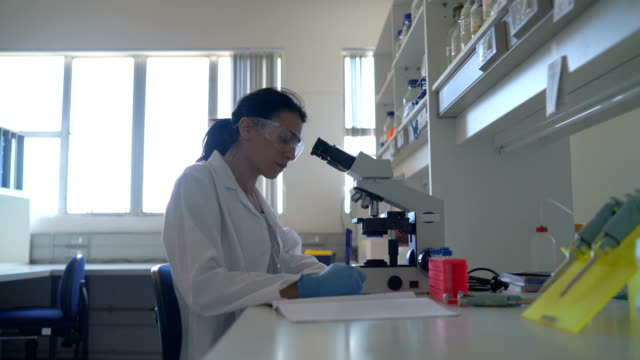 Female scientist using microscope in laboratory