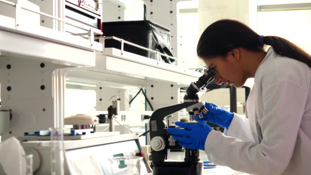 pan female scientist using microscope while working in laboratory - laboratory stock-videos und b-roll-filmmaterial