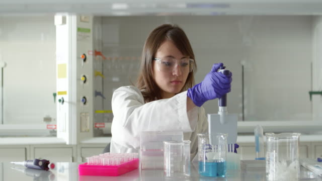 vidéos et rushes de ms female scientist using multichannel pipettor to transfer solution to cell culture plate - science