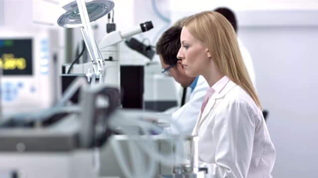 ls ds female scientist working in a laboratory - medical test stock videos & royalty-free footage