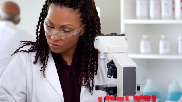 female scientists concentrate while conducting research in a lab - stem topic stock videos & royalty-free footage