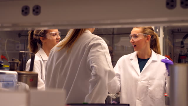 ms female scientists in discussion while working in research laboratory - lab coat stock videos & royalty-free footage