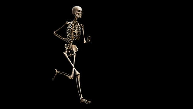 """female skeleton, running"" - 生理学点の映像素材/bロール"