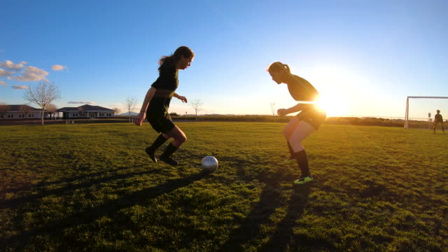 vídeos de stock e filmes b-roll de female soccer players battle for ball - football