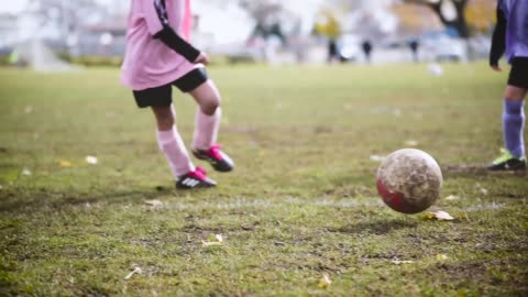 female soccer players. - sports activity stock videos & royalty-free footage