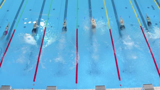 aerial female start at freestyle swimming competition - スタートライン点の映像素材/bロール