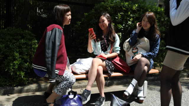 vídeos de stock, filmes e b-roll de female students sitting together on a bench one is video chatting in english on her smartphone at the campus grounds - estudante universitária