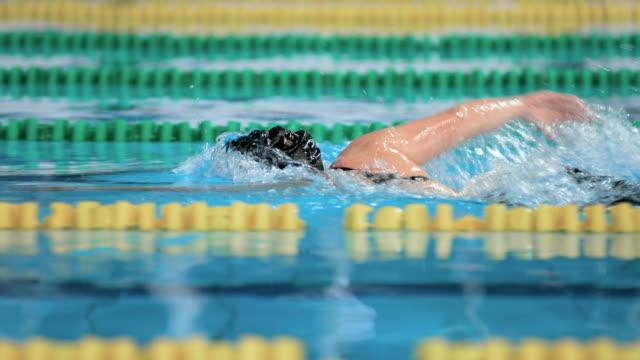stockvideo's en b-roll-footage met slo mo ts female swimmer swimming the front crawl - binnenbad