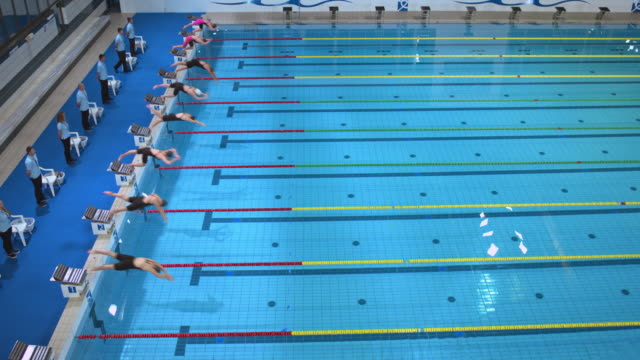 female swimmers jump off the blocks in breaststroke competition - 水泳点の映像素材/bロール