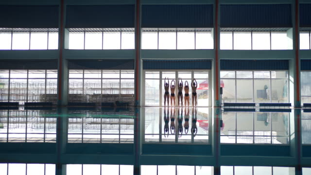 female swimmers practising performance by poolside - water sport stock videos & royalty-free footage