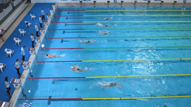 female swimmers race to finish in butterfly swimming competition - wettkampf stock-videos und b-roll-filmmaterial