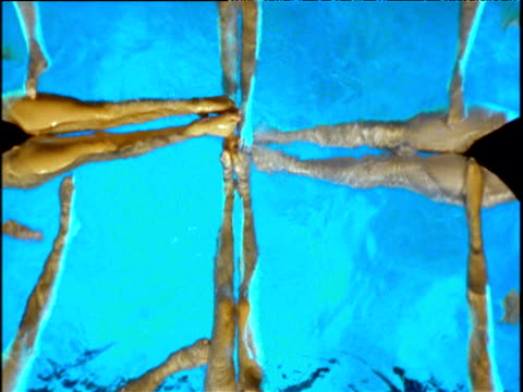 female synchronized swimmers form into square zoom out as they then break apart - entstehung stock-videos und b-roll-filmmaterial