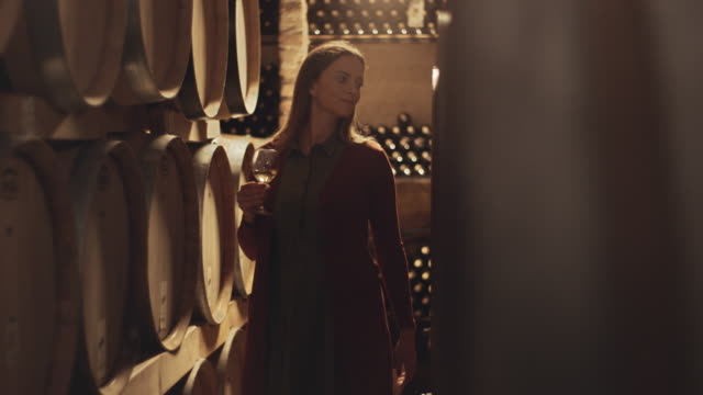 female tasting wine in winery - viniculture stock videos & royalty-free footage