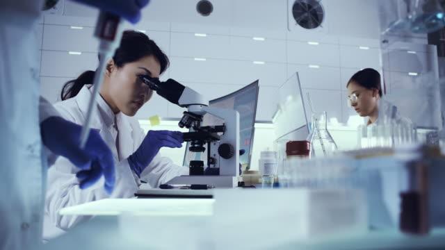 weibliches team, das mit krankheitserregerproben arbeitet. asiatischer arzt mit mikroskop - chemie stock-videos und b-roll-filmmaterial