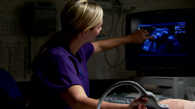 Female technician discussing ultrasound with pregnant female patient