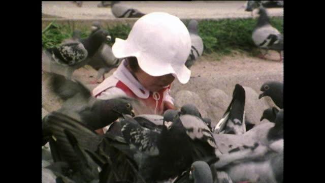 vídeos de stock e filmes b-roll de female toddler feeds pigeons in hiroshima peace park; 1975 - bando de pássaros
