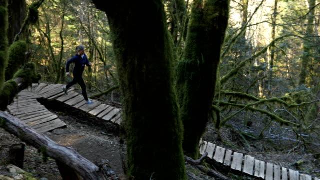 stockvideo's en b-roll-footage met female trail runner explores lush pacific rain forest - haar naar achteren