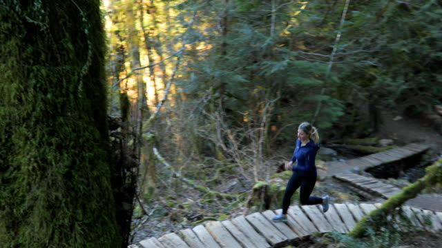 female trail runner explores lush pacific rain forest - british columbia stock videos & royalty-free footage