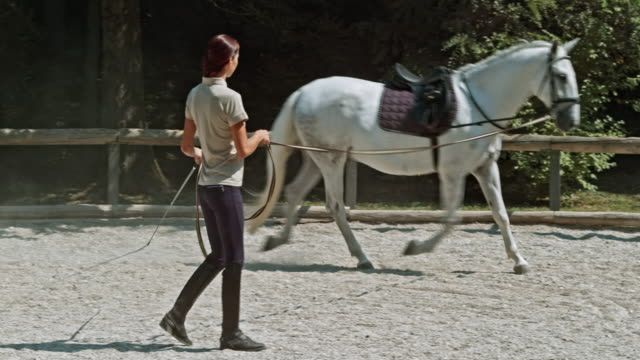DS Female trainer training a saddled horse in round pen