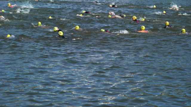 pan female triathlete swimmers at race in a canal - triathlete stock videos and b-roll footage