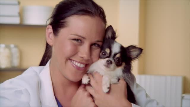 cu, zo, female veterinarian hugging long hair chihuahua, portrait - animal welfare stock videos and b-roll footage