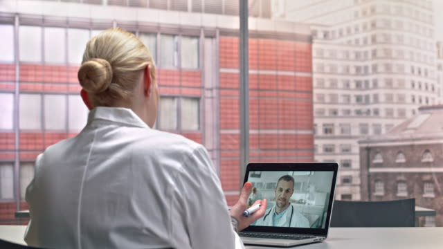 DS Female veterinarian on a video call with her colleague