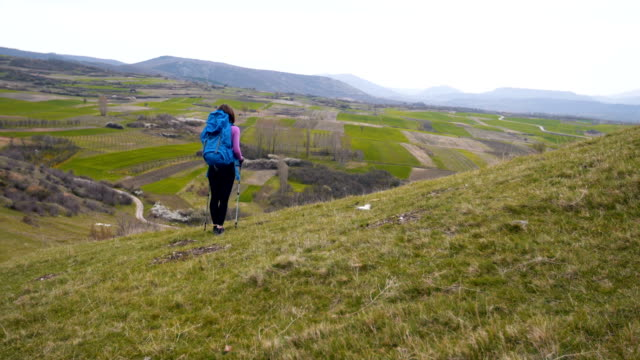 female walking on a meadow in the mountains - hiking pole stock videos and b-roll footage