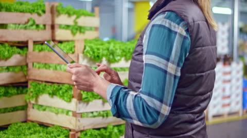 vídeos y material grabado en eventos de stock de ds empleado de almacén femenino comprobando las cajas de lechuga con la ayuda de la tableta digital - orden