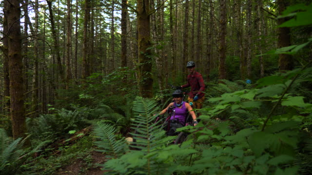 ms female wheelchair athlete on adaptive mountain bike getting help starting ride on trail from friends - persons with disabilities stock videos & royalty-free footage