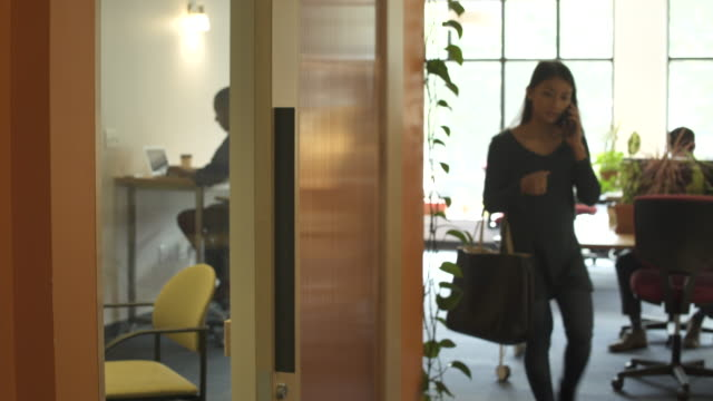 female worker arriving to office, talking on mobile phone. - ハンドバッグ点の映像素材/bロール