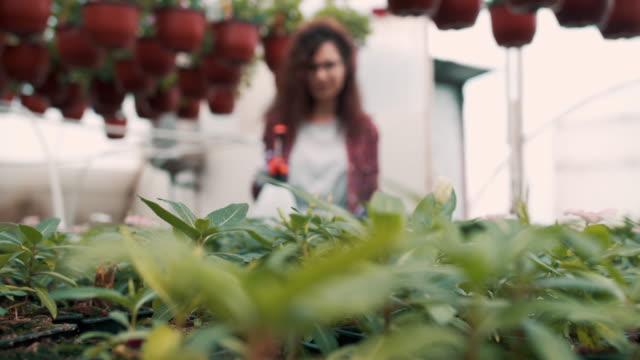 温室の女性労働者 - グリーンハウス点の映像素材/bロール