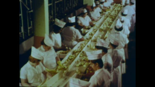 1966 female workers in white uniforms inspect apples alongside the usda inspector - quality control stock videos & royalty-free footage