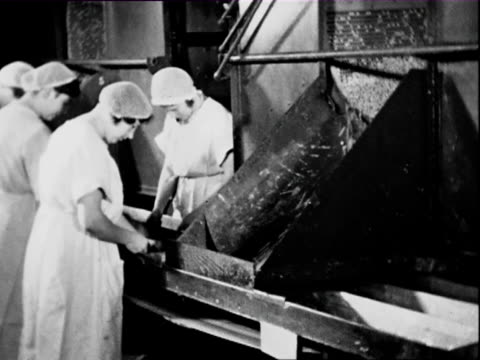 1938 B/W MS PAN Female workers working in margarine factory separating seeds / East Prussia, Germany