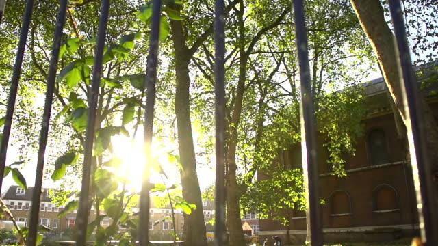 vidéos et rushes de hd super slow-motion: clôture et de lumière du soleil - clôture jardin