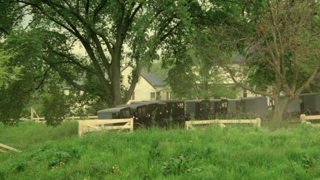 a fence and tall grass partially hide amish buggies parked in front of a farmhouse. - amische stock-videos und b-roll-filmmaterial