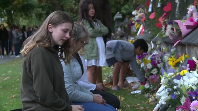 a fence at christchurch's botanical garden becomes a place of mourning as christchurch residents lay flowers and leave messages of blessing there... - grief stock videos & royalty-free footage