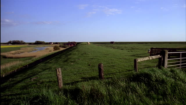 pan fence on top of green grassy dike surrounded by fields.  schleswig-holstein, germany - fence stock videos & royalty-free footage