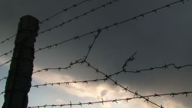 fence with barbed wire (time lapse) - barbed wire stock videos & royalty-free footage
