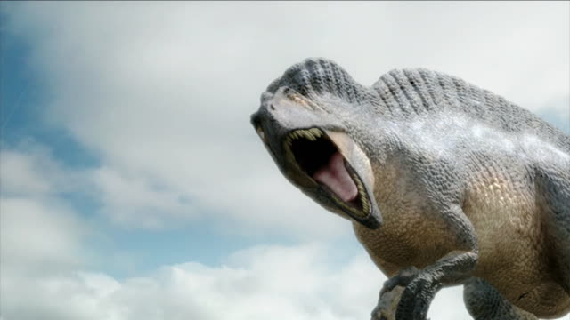 a ferocious dinosaur roars in a reenactment. - testa di animale video stock e b–roll