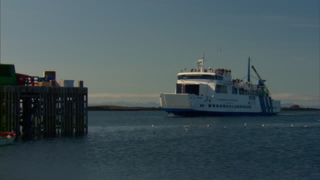 MS Ferry boat arriving at dock in bay / Iceland