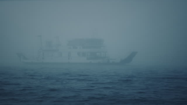 vídeos de stock e filmes b-roll de ws - ferry boat passing by in a heavy mist, birds flying around - navio de passageiros