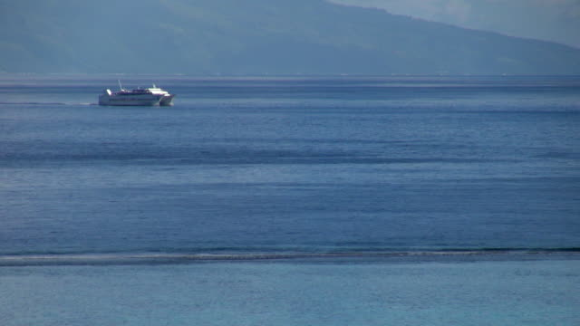 ferry crossing the blue ocean near moorea - insel moorea stock-videos und b-roll-filmmaterial