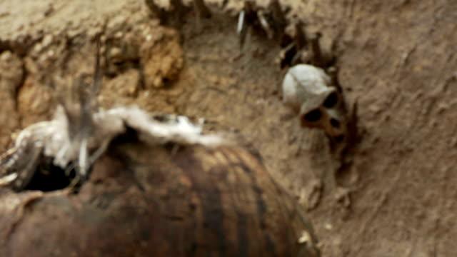 fetish teschio in africa - sfondo marrone video stock e b–roll