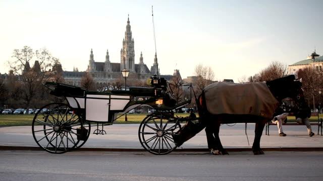 stockvideo's en b-roll-footage met fiaker carriage in vienna, austria - koets