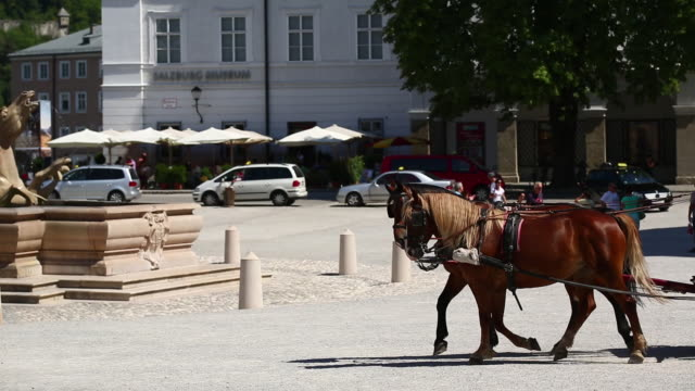 pan fiaker carriage with tourists riding on residenzplatz in salzburg - arbeitstier stock-videos und b-roll-filmmaterial