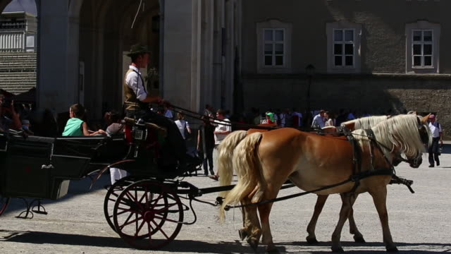 stockvideo's en b-roll-footage met pan fiaker coachman feeding his horses on residenzplatz in salzburg - paardenkar